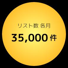 リスト数各月35,000件