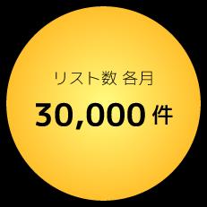 リスト数各月30,000件